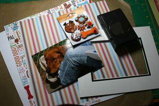 Pup step 1
